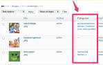 Media Library Page – WordPress3.5